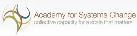Academy for Systemic Change
